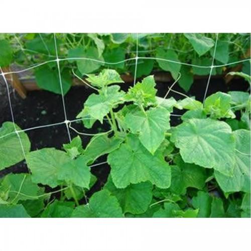 Мрежа за краставици ПАРЧЕ 1.50 х 4 л.м